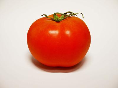 tomato-m.jpg